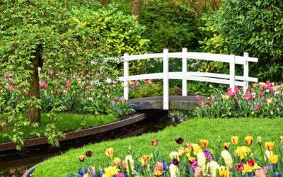 Grønne fingre eller kreativ sjel – tips til enkle hageprosjekt